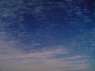 izone550kumo100225.jpg,しもふり雲