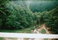 ag201008yamanashi3_07.jpg
