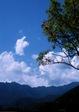 ba201008nishizawa1_1.jpg