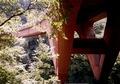 ba201008nishizawa1_4.jpg