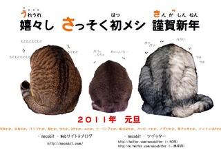 nengajyo2011.jpg