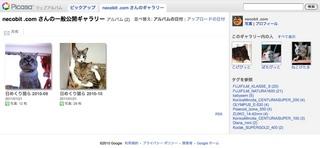 Picasaウェブアルバムで『日めくり猫らアルバム』始めました。1