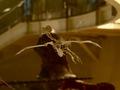 科学博物館恐竜1