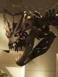 科学博物館恐竜3