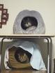 E-520 necobitter『日めくり猫ら』まとめ 2011年1月分5