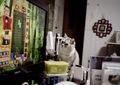 KLASSE S necobitter『日めくり猫ら』まとめ 2011年1月分5