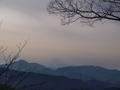 2010正月高尾山5