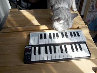ミニミニ鍵盤2