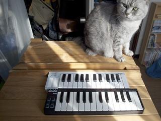 ミニミニ鍵盤3