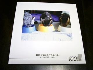 カメラのキタムラで100ページ猫らフォトブック作ったぞー2