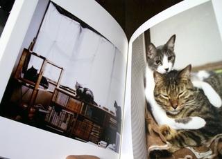 カメラのキタムラで100ページ猫らフォトブック作ったぞー4