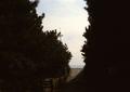 babysem『サンバーで海沿い走り撮り 1』2