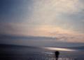 babysem『サンバーで海沿い走り撮り 2』2