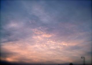 Polaroid izone550『ぼんわ〜り咲く雲』