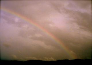 Polaroid izone550『あの日は朝も虹だった!』1
