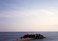 babysem『サンバーで海沿い走り撮り 4』1