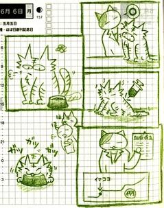 猫ら絵日記『グルメ猫でも歯肉炎でもなく、腎臓だった話 その1』