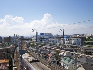 20110710猿ヶ島5
