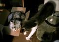 necobitter『日めくり猫ら』まとめ 2011年6月分agfa_830s_9