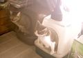 necobitter『日めくり猫ら』まとめ 2011年6月分polaroid_a520_6