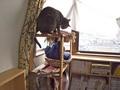 necobitter『日めくり猫ら』まとめ 2011年6月分olympus_e-520_2