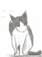 日めくり猫ら番外編・その他らくがき写真まとめ 2011年6月分1