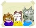 日めくり猫ら番外編・その他らくがき写真まとめ 2011年7月分9