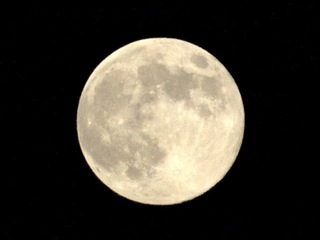 20110913中秋の名月