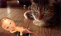 necobitter『日めくり猫ら』まとめ 2011年8月分nintendo_3ds_2