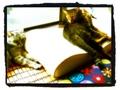 日めくり猫ら番外編・その他らくがき写真まとめ 2011年8月分2