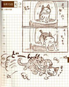 猫ら絵日記『トイレから、出た瞬間を、襲うのが流行っている。』