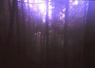 SnapSight藤野から陣馬山3