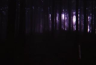 SnapSight藤野から陣馬山4