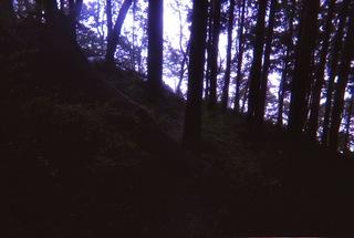 陣馬山-景信山7