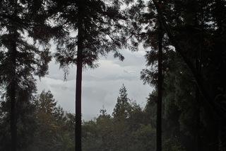 陣馬山-景信山6