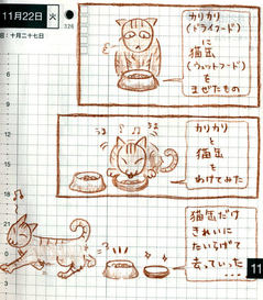 猫ら絵日記『ねこめしトラブルシューティング 1』