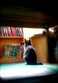 necobitterの猫ら写真まとめ 2011.11_Polaroid a520
