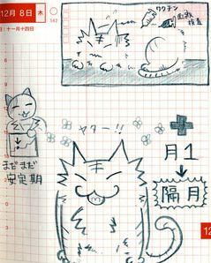 猫ら絵日記『グルメ猫でも歯肉炎でもなく、腎臓だった話 その7』
