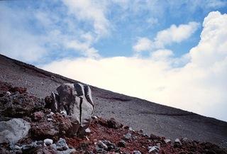 富士山岩等5