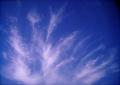 Polaroid a520『ぐわーっ!!!としてる雲』