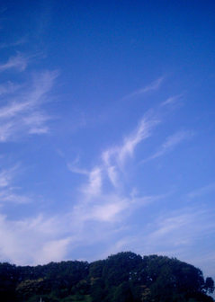 Polaroid a520『ぐるぐるひねり雲』2