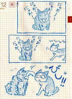 猫ら絵日記『注意は一発!』