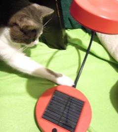 快適室内撮りにIKEAのソーラーLEDライト!1