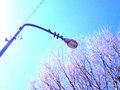 iPod touch『天気がいいから川っぺり』2
