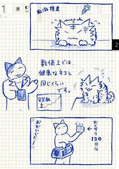 猫ら絵日記『グルメ猫でも歯肉炎でもなく、腎臓だった話 その8』