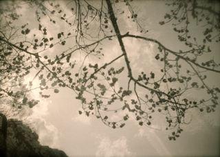 SMENA 8M『梅まつり2011 その3』1