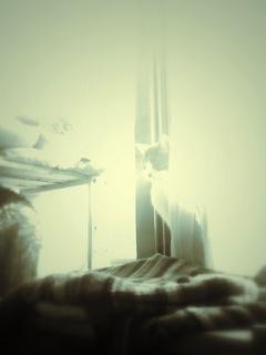 necobitterの猫ら写真まとめ 2012.02_iPod touch-2