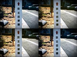 iPod touch『百草園へのもう一つの道』-1