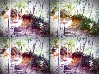 iPod touch『百草園へのもう一つの道』-5