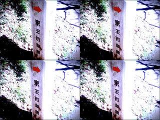 iPod touch『百草園へのもう一つの道』-6
